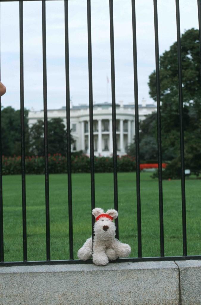 White House Kopie