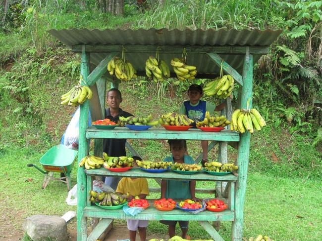 Fiji Kinderstand in Ba, Fiji