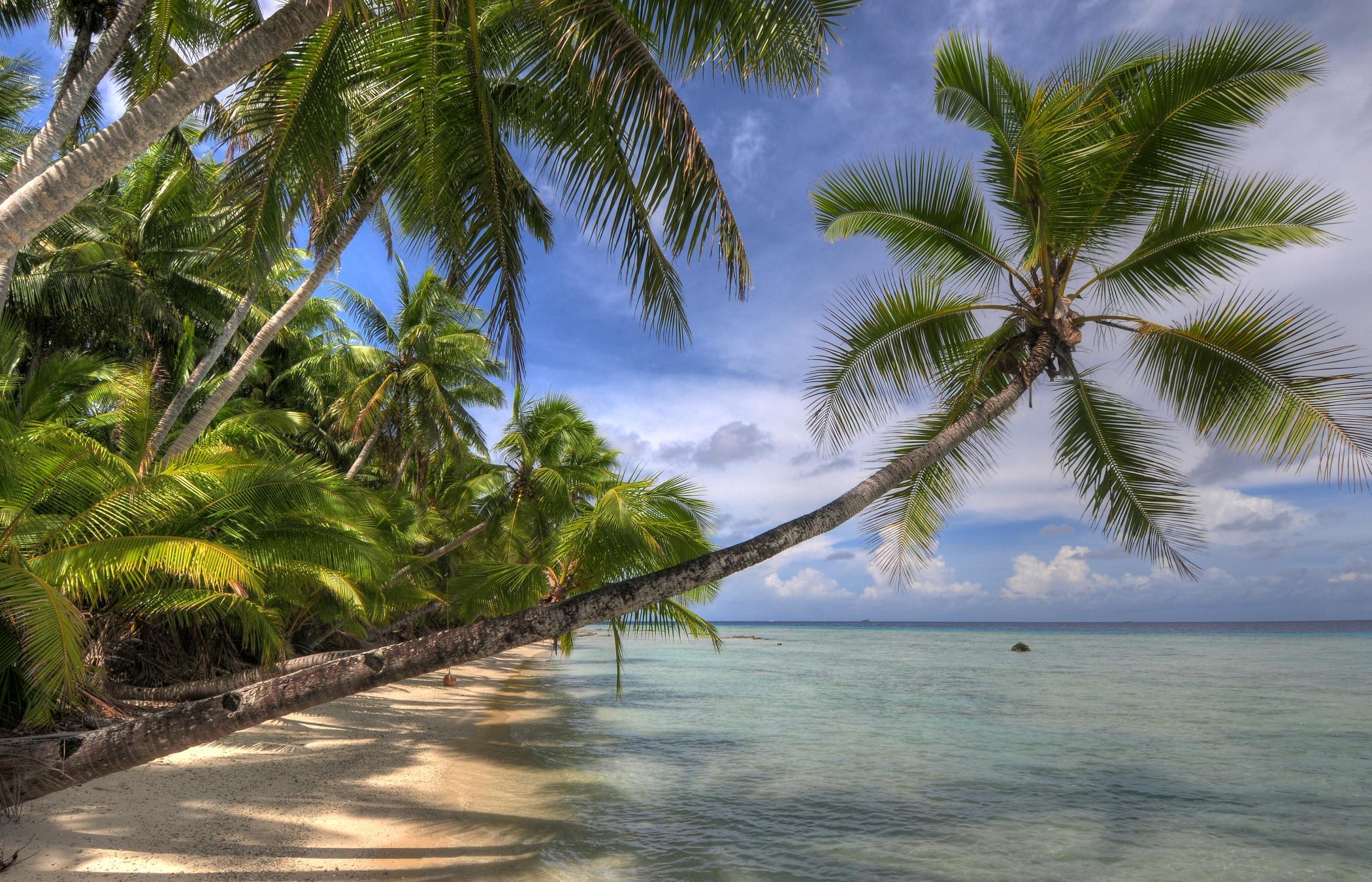 BeachDream Kopie