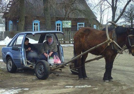 PferdeAuto Kopie