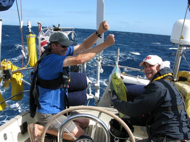 Seglerim Kockpit:Fisch Kopie