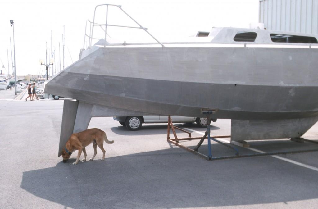 Kiele Hund