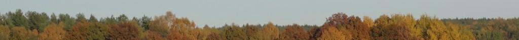 Herbst#6