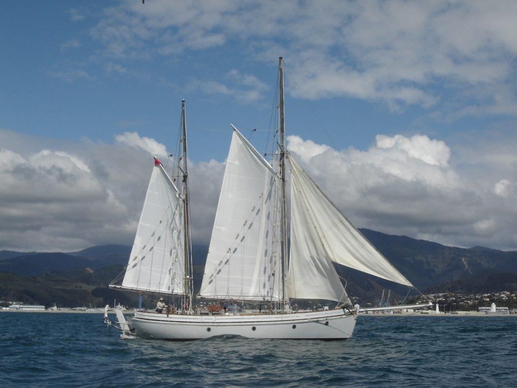 irene-port-nelson